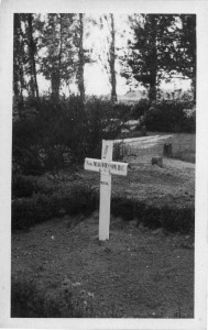 cross Harold in 1946