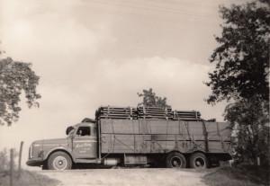 Van der Ham 036