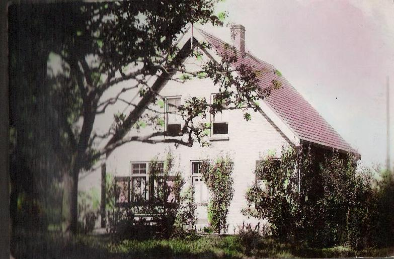 Diepenhorst Liessteeg
