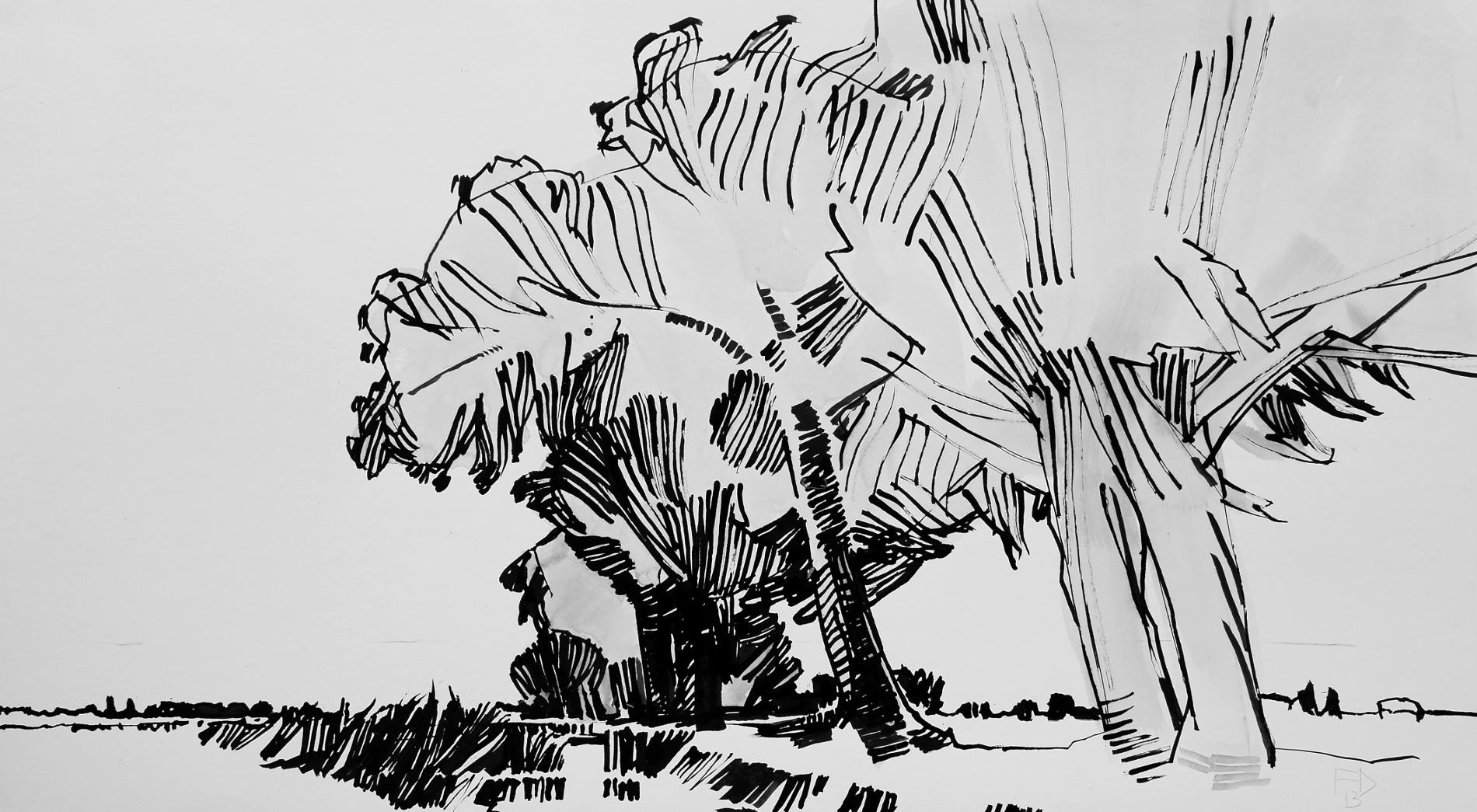 Frank Dekkers Aaksterveldsesteeg 2013 o.i.inkt op papier 55 x 100 cm