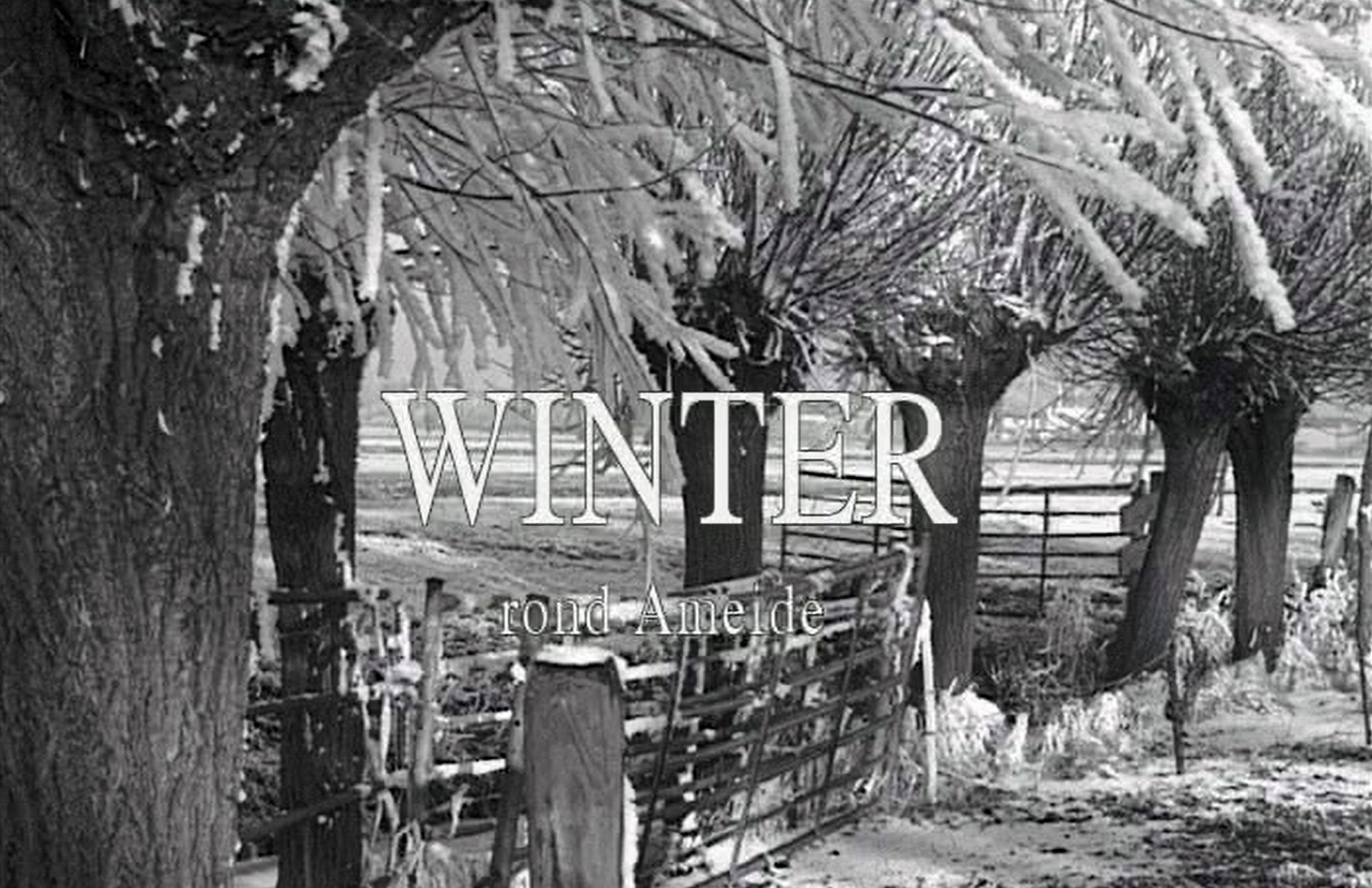 winter-rond-ameide